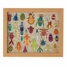 Natural History Framed Wall Art (Bugs)  | The Land of Nod