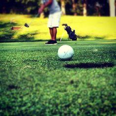 Golfing... a pleasure!!