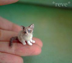 OOAK Realistic ~ Ragdoll Kitten ~ Handmade Miniature 1:12 Sculpture * Reve #Handmade