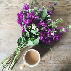 12/08/15 Blooms. Send in London for just £18 inc delivery.