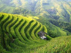 Longji terrace fields hiking, hiking map, route (Ping & # an to Dazhai) and tips, Guilin, Rice Terraces, Beautiful Farm, Water Element, How To Become Rich, Travel Photos, Places To See, Fields, Travel Photography