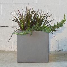 Modern Living, Mid-century Modern, Square Planters, Curb Appeal, Stuff To Do, Planter Pots, Furniture, Plants, Design