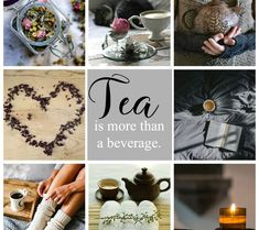 The Life Of Tea – A cup of tea will change your life.