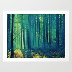 Eyes On The Forest, Not On The Trees. Art Print by Ally Coxon - $20.00