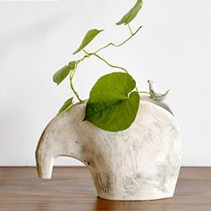 Natural and nature-inspired vases for your home, including this elephant vase by Kusafune.