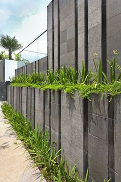 Best Concrete Fencing Design Ideas For Backyard Remodeling Plan The material of a fence holds an important role when you are about to build one for your beloved home. It has to be such a primary consideration before you . Read more… Landscape Walls, Landscape Architecture, Landscape Design, Boundry Wall, Compound Wall Design, Modern Fence Design, Modern Farmhouse Exterior, Gate Design, Outdoor Landscaping