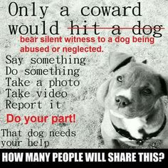 Save animals world wide do your part. Repost if you're against animal abuse. Dog Quotes, Animal Quotes, Save Animals, Animals And Pets, I Love Dogs, Puppy Love, Stop Animal Cruelty, Animal Welfare, How To Take Photos