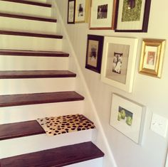 stairway perfection : gorgeous gallery wall, leopard runner