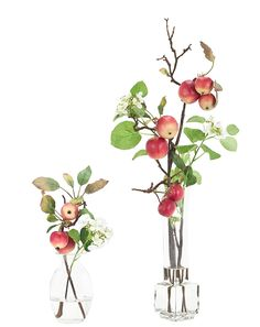 Apple Branch | Set of 2 (RF038/2): Apple Red,Snowball Cream Grn,Glass Bottles, Set of 2,7-8w6-7d13-26h