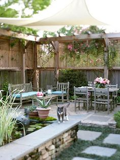 Great privacy screen for the backyard! Also - really like the idea of a stonewall/bench - along the outside of the patio, with plantings or pots on the other side. And I LOVE the pergola Backyard Privacy, Backyard Patio, Backyard Landscaping, Nice Backyard, Backyard Ideas, Fence Ideas, Garden Privacy, Backyard Canopy, Outdoor Privacy