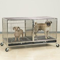 ProSelect Stainless Steel Modular Cage with Plastic Tray -- Find out more details by clicking the image : Dog cages Dog Kennel Cover, Cat Cages, Bird Cages, Pet Travel, Travel Tips, Pet Furniture, Pet Mat, Pet Carriers, Find Pets