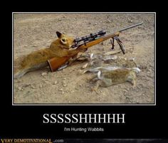 Funny hunting pictures, however, are source of fun and entertainment. There are some funny hunting pictures with hunted animals and people both are tied up on vehicles or in other pictures animals are Fox Pictures, Hunting Pictures, Funny Animal Photos, Funny Animals, Funny Pictures, Funny Pics, Hilarious Quotes, Animals Images, Creative Pictures