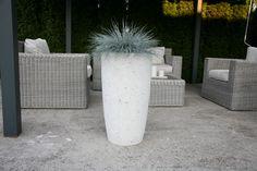 Flower Pots, Concrete, Canning, Container Plants, Home Canning, Flower Planters, Cement