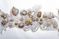 Pièce d'étude pour la collection Gwenn-Ha-Du. Organza de soie, perles argent brodées au crochet de Lunéville, coquillages.