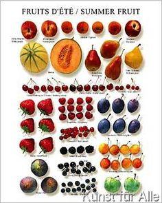 Atelier Nouvelles Images - Summer Fruit