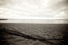 Hawaii 2012 Timeless 3010