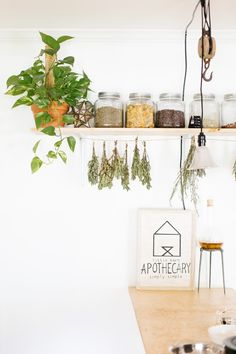 Urban Outfitters - Blog - Dreamers + Doers: Little Barn Apothecary