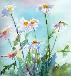 Daisies Watercolour on Paper 40x40cm by Diane Fegredo