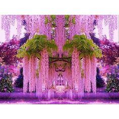 сад в Японии #остров #я #жара #путешествие #отдых #горы #лес #курорт #красота #берег #тур #пляж #море #небо - @wow_travel- #webstagram
