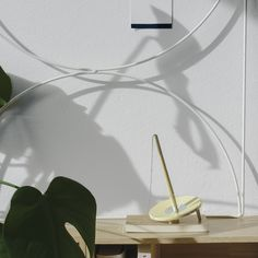NORDIC DESIGN | Wallment bow grid | Ballograf for HAY pen | Monstera deliciosa
