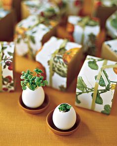 Martha, I love you. Egglings--tiny planters filled with seeds of herbs like parsley and basil--make fitting favors for a food-loving couple Diy Wedding Favors, Party Favors, Wedding Gifts, Wedding Decorations, Wedding Ideas, Wedding Things, Martha Stewart Weddings, Herb Wedding, Table Wedding