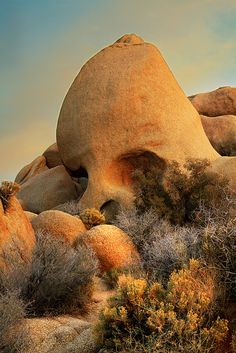 Skull Rock at Sunset - Joshua Tree National Park, CA; I've been to Joshua Tree but never seen this rock. Places To Travel, Places To See, Places Around The World, Around The Worlds, Beau Site, Joshua Tree National Park, Natural Wonders, Amazing Nature, The Great Outdoors