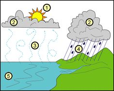 A water cycle diagram.
