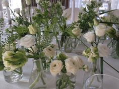decoration white elegance
