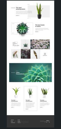 Botanique on Behance