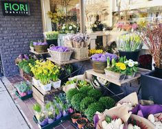 It just doesn't get better than that! 19C in the middle of February ☀️💐 In heaven with this warm weather 🙌 #dreamingofspring #oakvilleflorist #downtownoakville #fiorioakville #flowerpower #flowerseverywhere