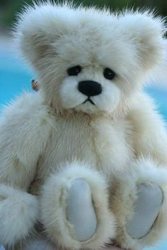 Ashley mink teddy bear