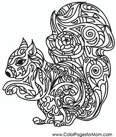 Animal Coloring Page 37