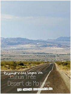 La tribu de Chacha : Rejoindre Las Vegas via Joshua National Park & le ...