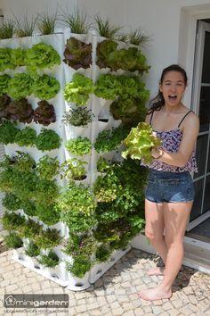 """39 Cheap and Easy DIY Garden Ideas Everyone Can Do [sc [sc name=""""r… - Easy Diy Garden Projects Hydroponic Gardening, Hydroponics, Container Gardening, Gardening Tips, Gardening Gloves, Gardening At Home, Gardening Direct, Indoor Gardening, Vertical Vegetable Gardens"""