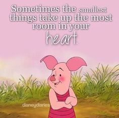 disney, piglet, and winnie the pooh image Winne The Pooh, Winnie The Pooh Friends, Piglet Winnie The Pooh, Eeyore, Tigger, Pooh And Piglet Quotes, Cute Quotes, Funny Quotes, Pooh Bear