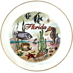 Vintage Florida Souvenir Plate Seahorse Sea Star Fish  Seahorse Sea Star Starfish Fish Conch Shell  Approximate Measurements: 8 inches in