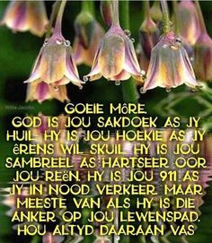 Goeie More, Afrikaans, Poems, Van, Faith, Blessings, Movies, Movie Posters, Anchor