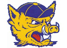 Texas A&M-Kingsville Javelinas, NCAA Division II/Lone Star Conference…
