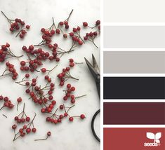 red Archives | Design Seeds