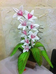 orquídea duas cores
