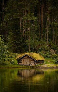 Cabin Reflection
