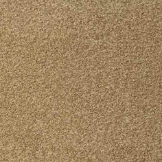 SIMPLE ATTRACTION, Dark Straw, Plush PetProtect® Carpet - STAINMASTER®
