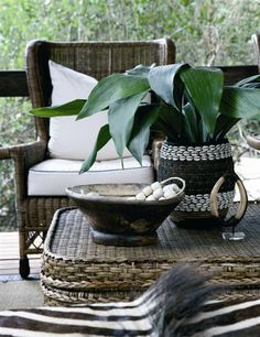 minimum number of colours, maximum textural contrast, essential touch of green-in-nature West Indies Decor, West Indies Style, British West Indies, British Colonial Decor, French Colonial, Tropical Style, Tropical Decor, Rattan, Tree Camping