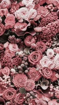 ideas for vintage flowers photography wallpaper backgrounds pink roses Watch Wallpaper, Flower Phone Wallpaper, Pink Wallpaper, Nature Wallpaper, Trendy Wallpaper, Wallpaper Quotes, Wallpaper Plants, Colorful Wallpaper, Iphone Wallpaper Vintage Hipster
