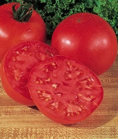Tomato Burpees Big Boy Hybrid