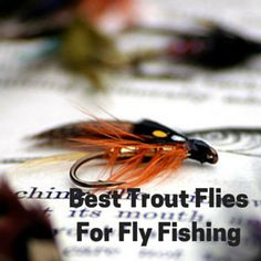Finding the best trout flies for fly fishing for someone is not an easy task. There are lots and lots of trout flies to choose from which makes selecting just the right trout fly even more difficult.