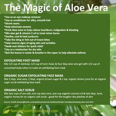 Aloe Vera has been used traditionally for a variety of skin conditions and orally as a laxative. Available at Natural Healthy Concepts today! Heal Sunburn, Aloe Vera Hair Growth, Aloe Vera For Skin, Aloe Vera Uses, How To Relieve Heartburn, Forever Living Products, Natural Medicine, Herbal Medicine, Skin Care Tips