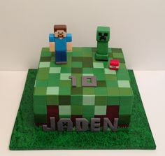 "Minecraft cake with Steve and Creeper.  8"" square with chocolate ganache and fondant decor. Cake board covered w a grassy plastic tablecloth found at dollar store. It worked perfectly!"
