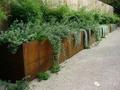 Marvelous Front yard fence lowes,Garden fence height and Garden fence fabric. Landscape Borders, Landscape Design, Garden Design, Fence Design, House Landscape, Corten Steel Planters, Metal Planters, Patio Planters, Balcony Gardening
