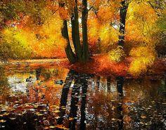 Leafy Stream